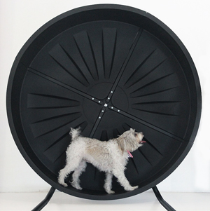 HDW Enterprises is proud to 